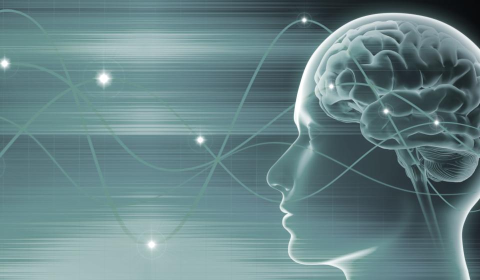 Gehirn - Schwingungen 3